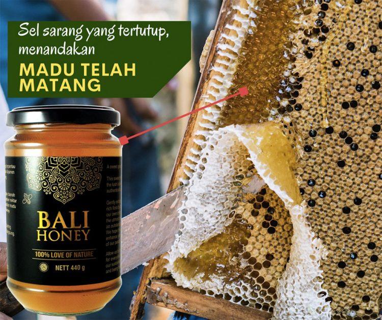 Tanda Madu Telah Matang Bali Honey